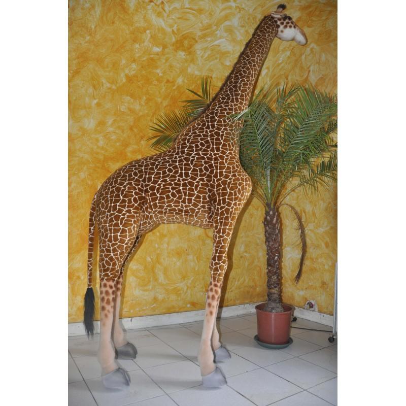 location de girafe en peluche. Black Bedroom Furniture Sets. Home Design Ideas