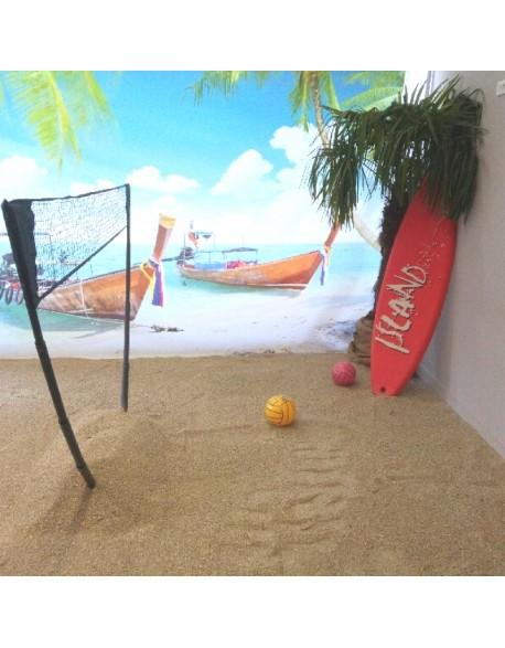 Décors beach volley