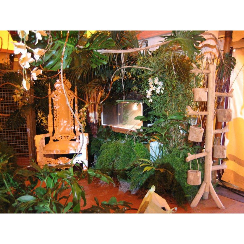 Locationd coration jungle for Decoration koh lanta