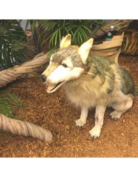 Location loup en peluche