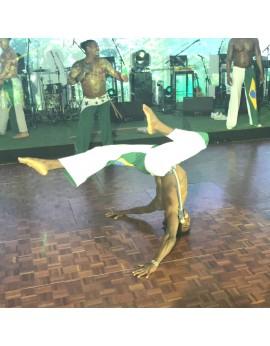 danseurs capoeiristes
