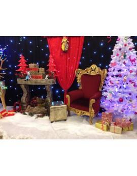 Location de décors de Noel chaud