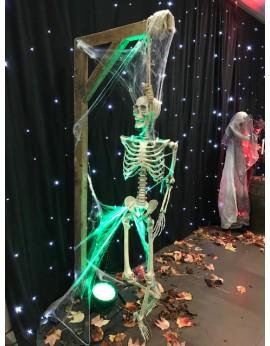 Potence et squelette