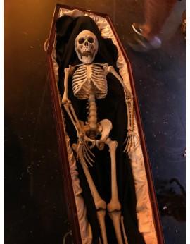 Squelette dans un cercueil