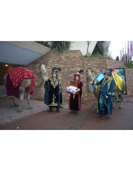 Arrivée des Rois Mages avec dromadaire