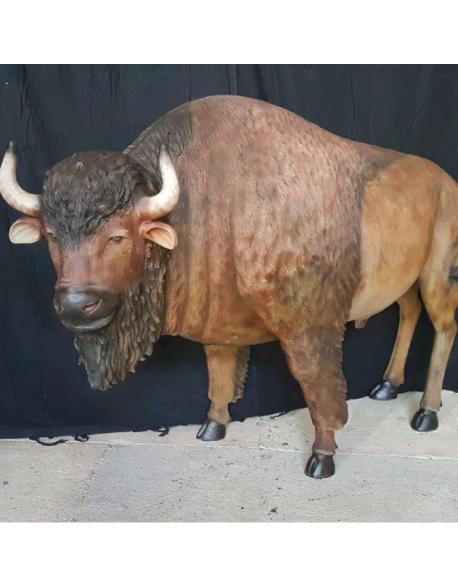 Location Bison en résine
