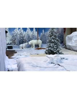 Décors montagne - hiver