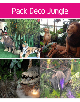 Forfait pack déco Jungle