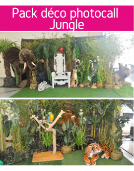 Forfait pack déco photocall jungle