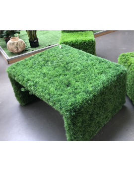 Table basse en herbe