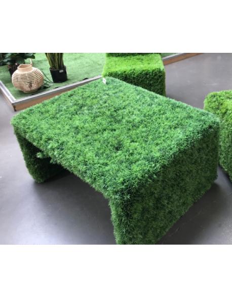 Table basse en herbe
