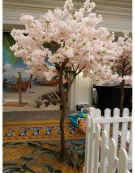 Cerisier en fleur 2.50m