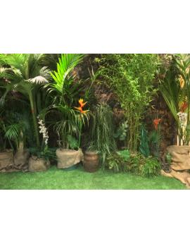 Location décoration Jungle - Safari - Afrique - Koh Lanta