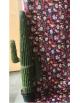 Location cactus