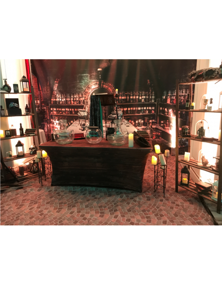Scénographie salle des potions