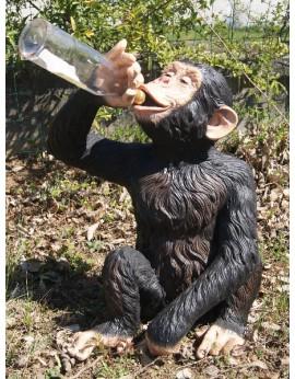 chimpanzé buvant à la bouteille