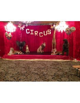 Location animaux de cirque en peluches