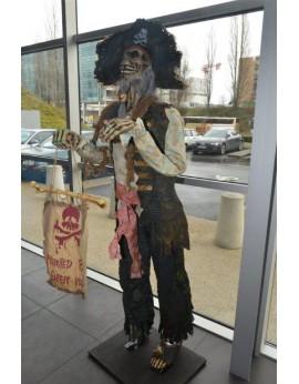 Location squelette pirate