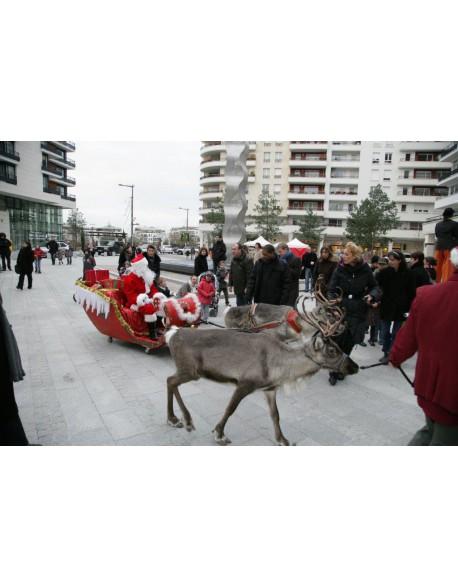 Location de Rennes du Père-Noël et leur traineau