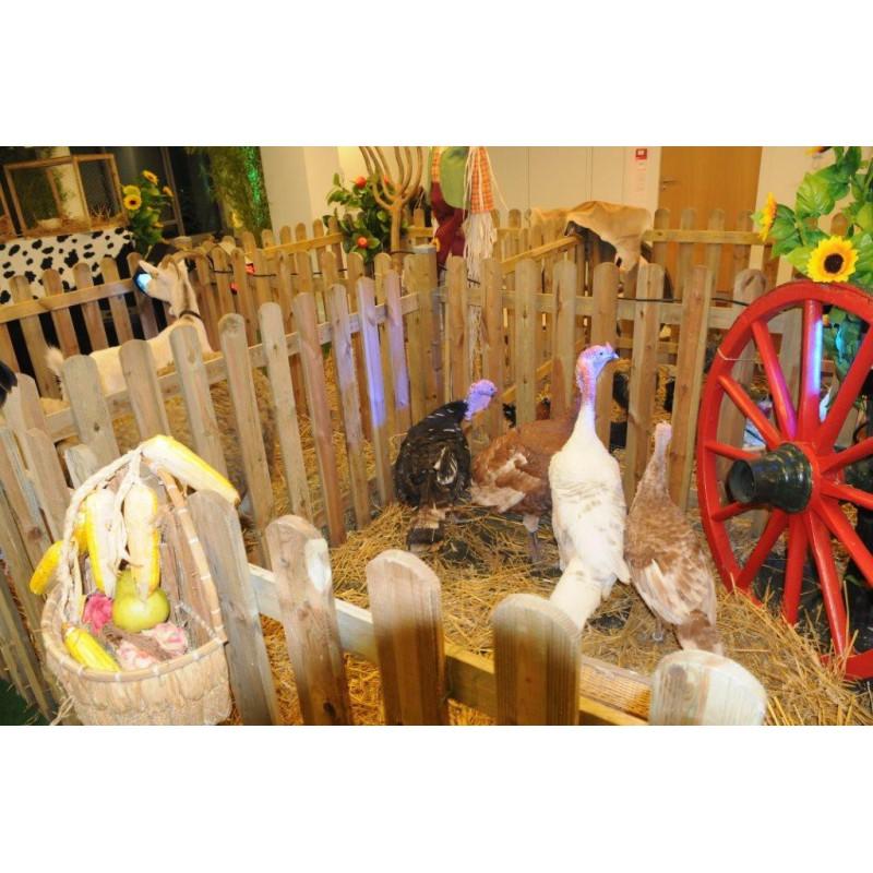 Location roue de charrette en bois - Roue de charette decoration ...