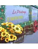 Location de décors et animations Champêtre - Campagne - Guinguette