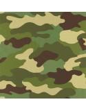 Location de décors et animations militaires